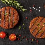Burger Vegana Aroma Ternera